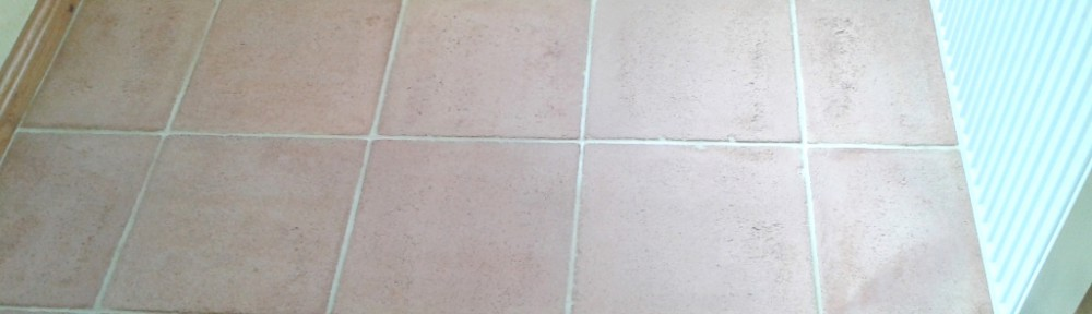 Sprucing up Terracotta Tiles in Shrewsbury