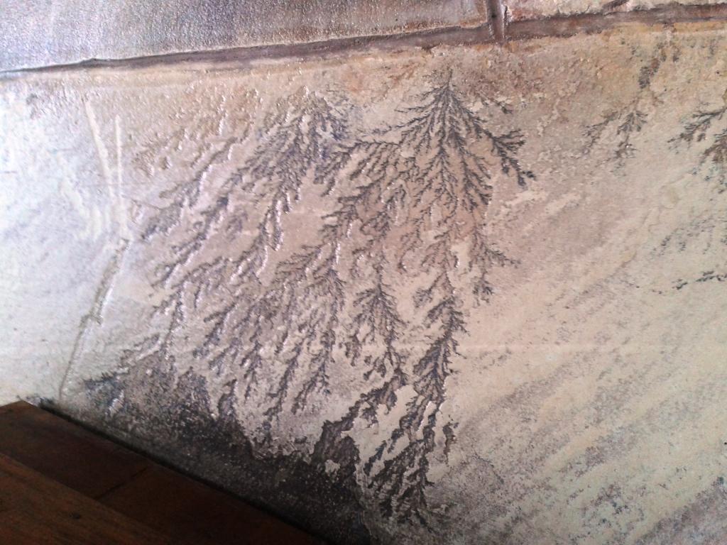 Indian Sandstone in Cleestanton Showing Fossils