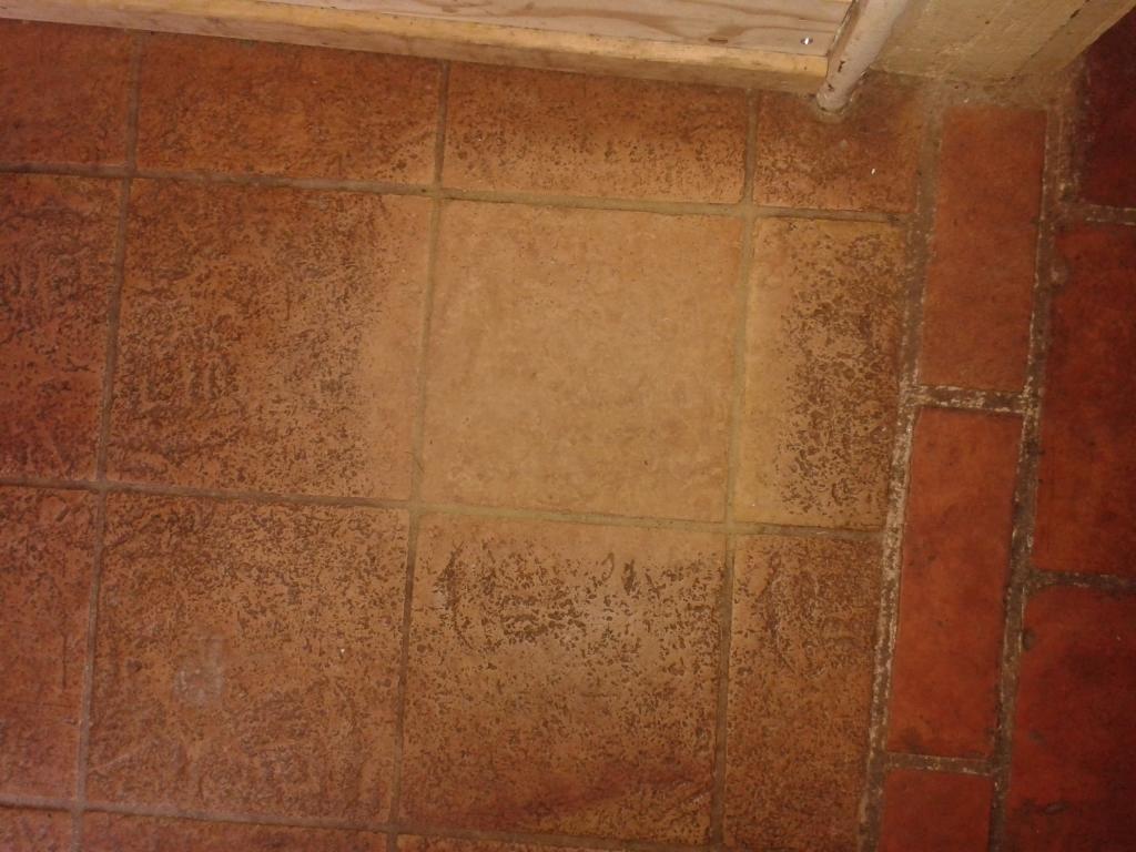 Terracotta Tiled Floor Cleaning Alveley TestPatch
