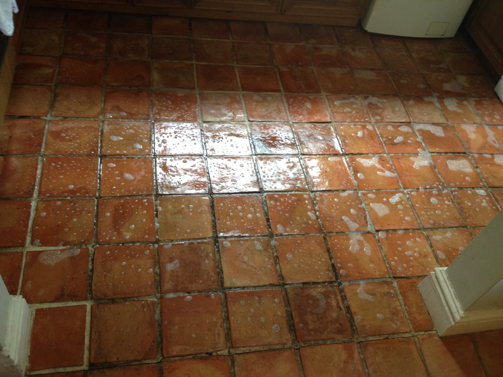 Mexican Terracotta Tile Cleaning Wellington